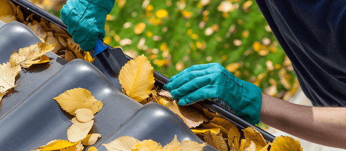 Preparing Your Home for the Fall Featured Image